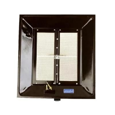 Pantalla 3000-6000 Cal. 2 Vías C/piloto Analizador De Ambiente Para Gn -ap Iga-